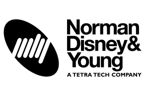 norman disney young hewsons executive coaching client